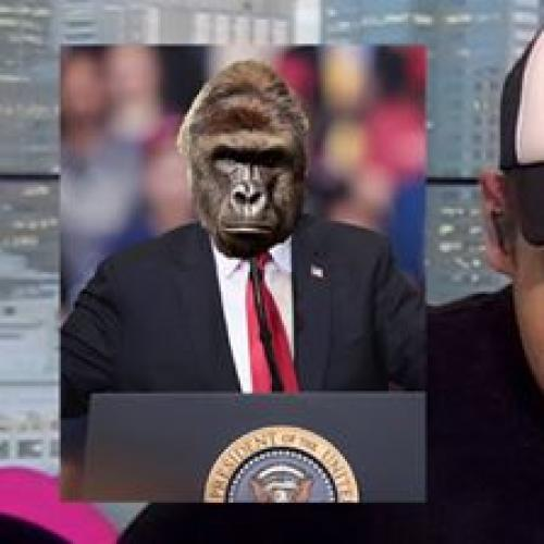 """Is He A Rapper?"": Radio Host Doesn't Know Who Harambe Is"
