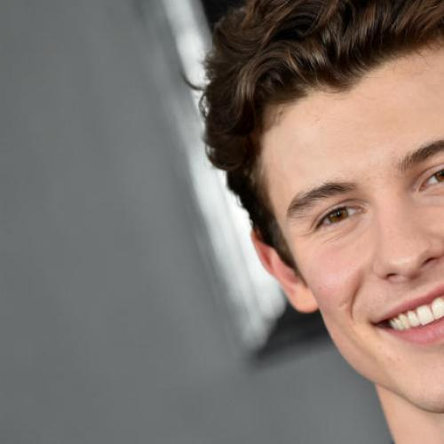 Shawn Mendes Strips Down For His Calvin Klein Ad
