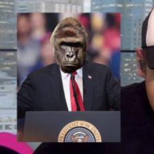 Radio Host Thinks Harambe Is A Rapper