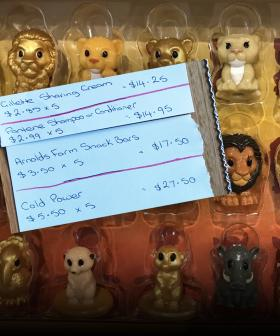 Aussie Shopping Genius Shows How To Get 21 Ooshies For $33