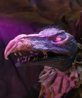 Second Trailer Drops For 'Dark Crystal' Prequel, And It's Breathtaking