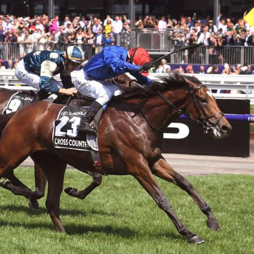 "Victoria Says ""Yeah, Nah"" To Sydney's Offer To Host This Year's Melbourne Cup"