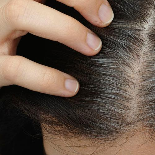 This Is What Really Happens When You Pluck A Grey Hair