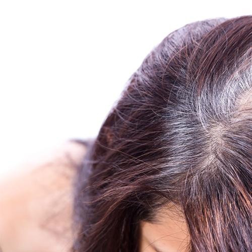 If You Pull Out A Grey Hair Will It Cause More To Grow Back?