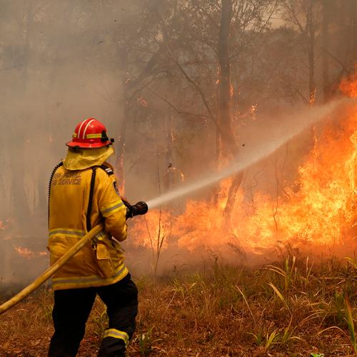 NSW Bracing For Devastating Bushfires As It Wakes To Catastrophic Conditions