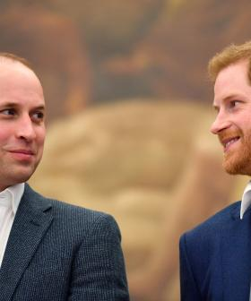 Prince William And Harry SLAM 'Bullying' Claims Made By 'Offensive' Article