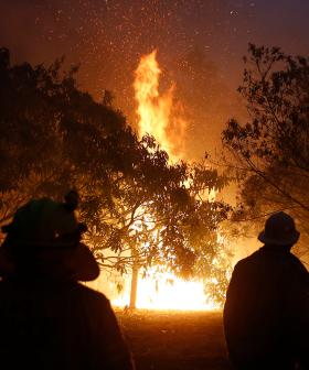 """""""All In"""": Aussie Labels Set To Donate 100% Of Profits For Bushfire Appeal"""