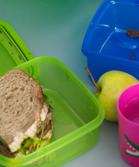 The Lunchbox Shaming Has Already Begun & It's Not Even The End of the Week