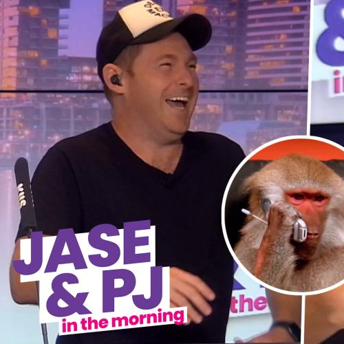 Our Exclusive Chat With a Baboon 🐵