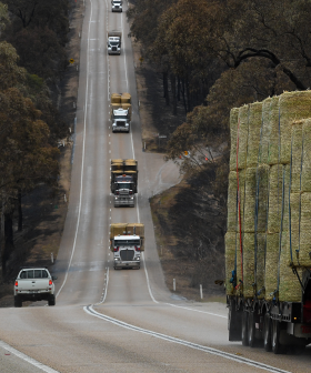 The Princes Highway Has Finally Reopened After The Horrific Bushfires