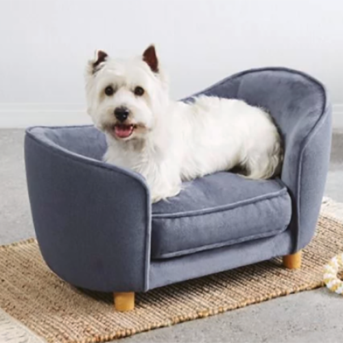 Aldi Is Releasing Pet Sofas Because It's What They Deserve