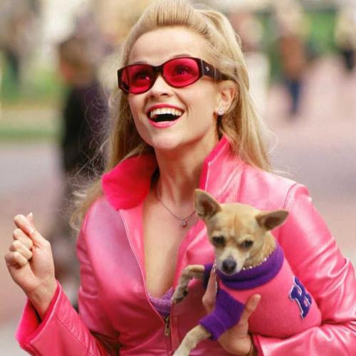 Reese Witherspoon Is Teaming Up With Mindy Kaling For Legally Blonde 3!