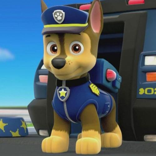 People Are Now Calling For The Cancellation Of 'Paw Patrol'