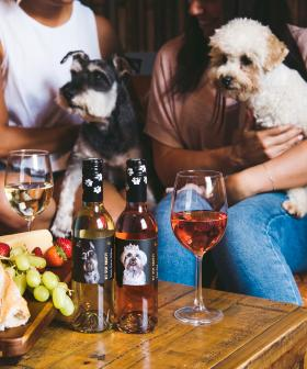 You Can Help Save Rescue Pets Just By Drinking This Aussie Wine