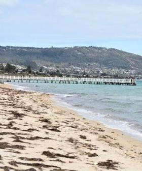 Popular Victorian Beach Evacuated After Explosives Found