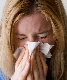 Hayfever Sufferers Should Prepare For Extreme Pollen Levels On Sunday