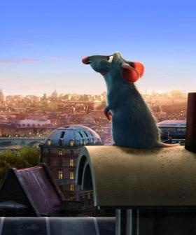 TikTok Users Have Written An Entire Musical Based On The Pixar Movie Ratatouille And It's Amazing!
