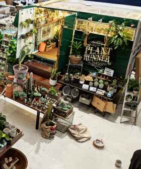 A Huge Plant Sale With Delicious Floral Cocktails Is Coming To Melbourne
