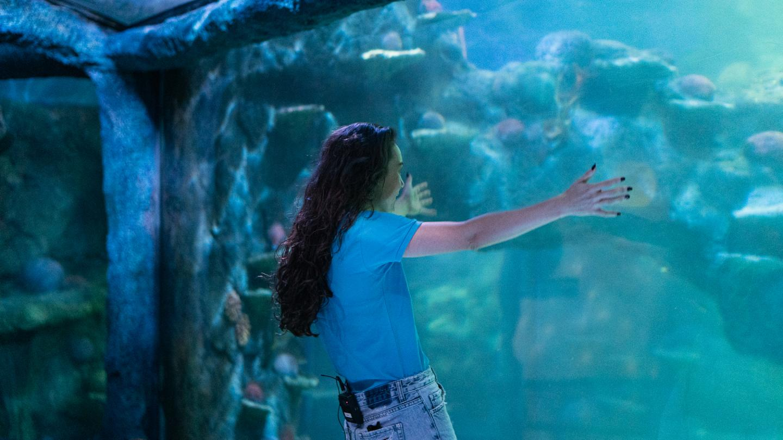 Amy Sharks Tour Of An Aquarium Takes A Turn!