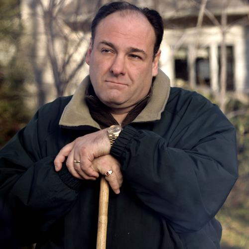 You'll Never Believe What This Sopranos Actor Did On Set
