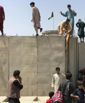 Feeling Helpless About The Fall of Afghanistan? This Is What You Can Do To Help