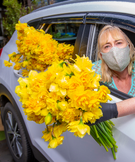 The Cancer Council & Rialto Are Now Delivering Bouquets of Flowers For Daffodil Day